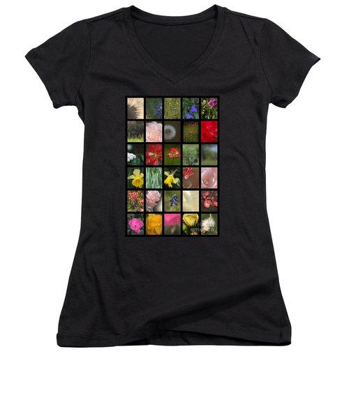 Texas Beauties Women's V-Neck T-Shirt