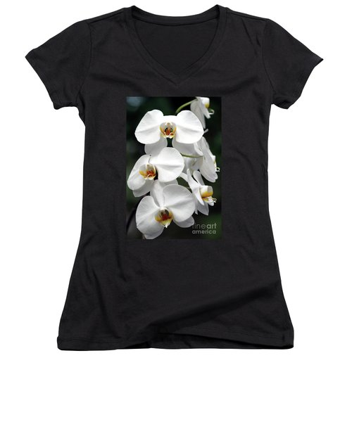 The Beauty Of Orchids  Women's V-Neck (Athletic Fit)