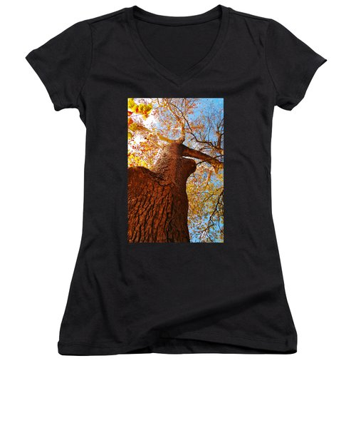 Women's V-Neck T-Shirt (Junior Cut) featuring the photograph The Deer  Autumn Leaves Tree by Peggy Franz