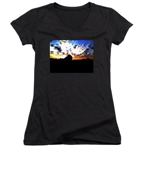 The Gift Of A New Day Women's V-Neck T-Shirt