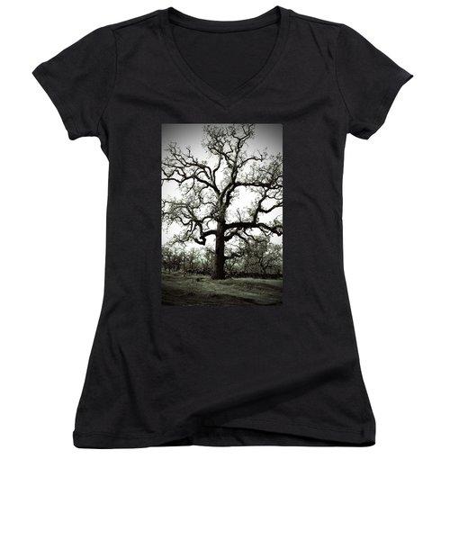 The Tree Women's V-Neck T-Shirt (Junior Cut) by Holly Blunkall