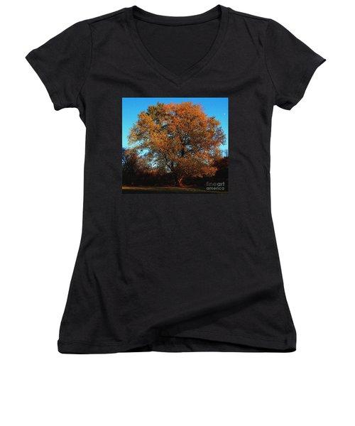 The Tree Of Life Women's V-Neck T-Shirt (Junior Cut) by Davandra Cribbie