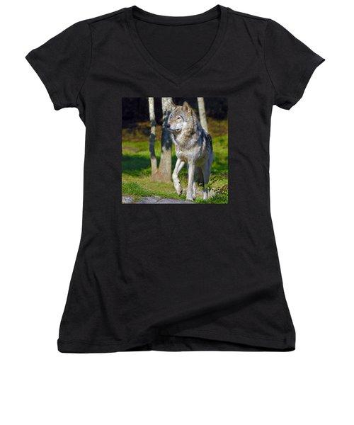 Timber Wolf  Women's V-Neck