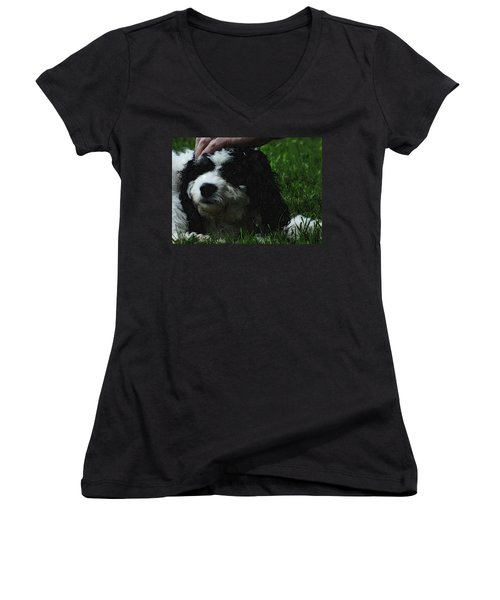 Women's V-Neck T-Shirt (Junior Cut) featuring the photograph TLC by Lydia Holly