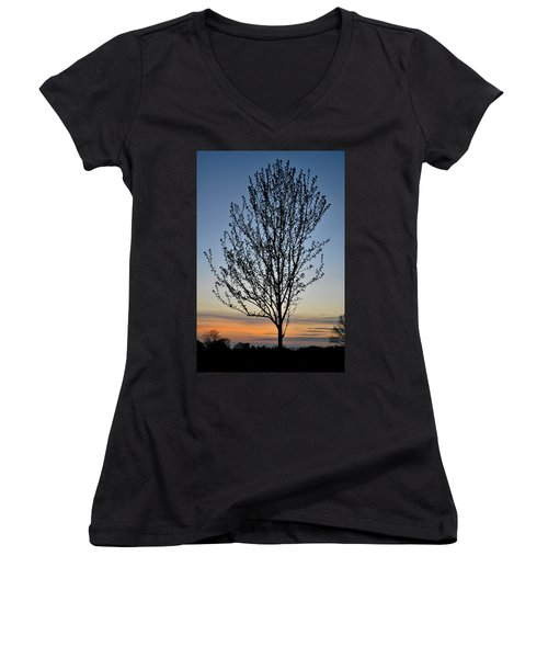 Tree At Sunset Women's V-Neck T-Shirt