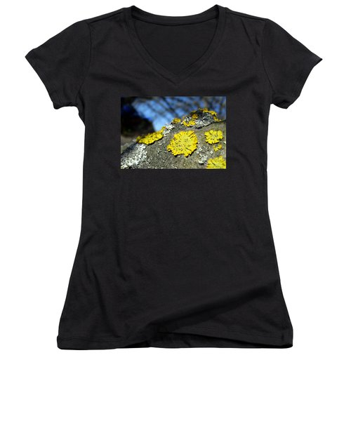 Women's V-Neck T-Shirt featuring the photograph Tree Lichen by Ausra Huntington nee Paulauskaite