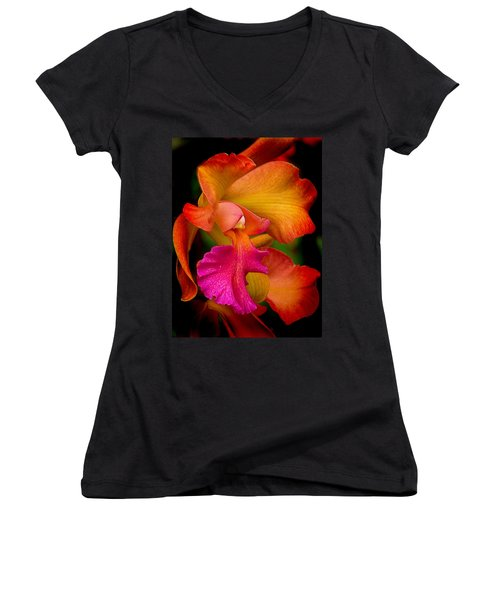 Tropical Splendor Women's V-Neck T-Shirt