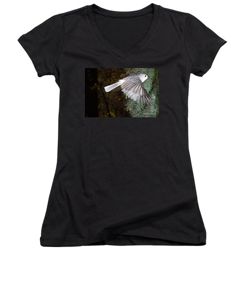 Tufted Titmouse In Flight Women's V-Neck T-Shirt (Junior Cut) by Ted Kinsman
