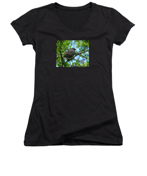 pretty in Tennessee Women's V-Neck T-Shirt