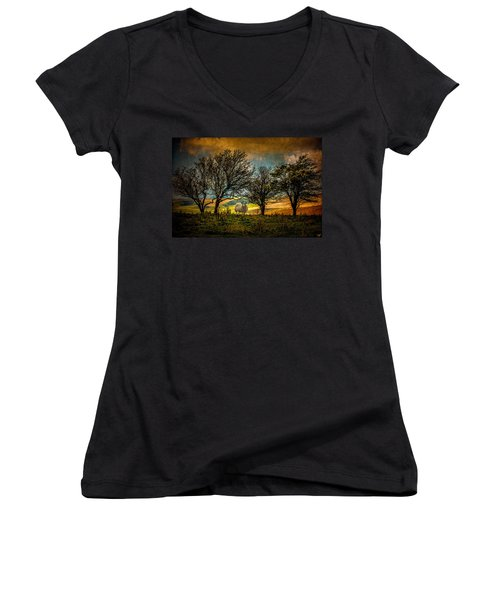 Women's V-Neck T-Shirt (Junior Cut) featuring the photograph Up On The Sussex Downs In Autumn by Chris Lord