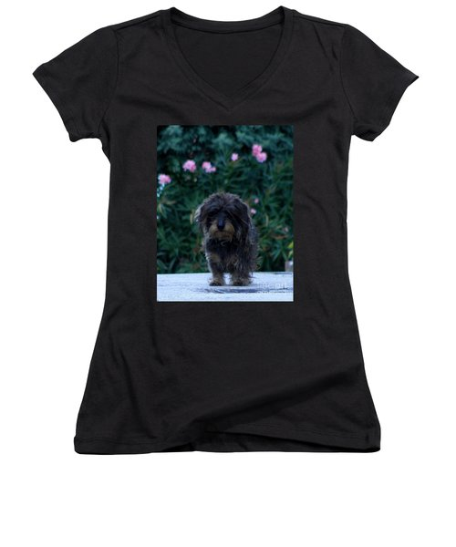 Waiting Women's V-Neck T-Shirt (Junior Cut) by Lainie Wrightson