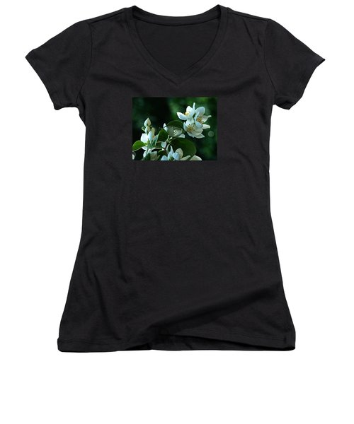 Women's V-Neck T-Shirt (Junior Cut) featuring the photograph White Buds And Blossoms by Steve Taylor