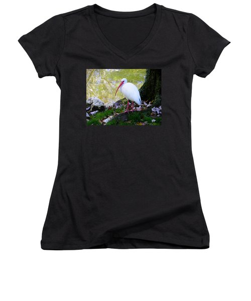 White Ibis Women's V-Neck (Athletic Fit)