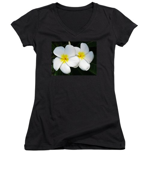 White Plumerias Women's V-Neck