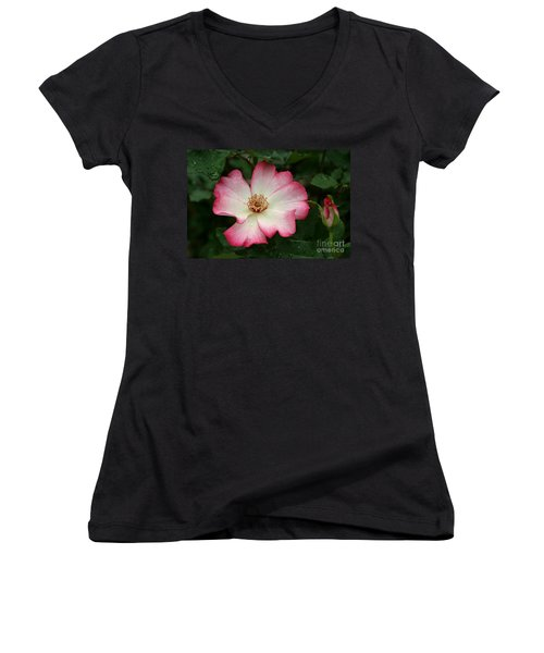 Windmill Women's V-Neck T-Shirt (Junior Cut) by Living Color Photography Lorraine Lynch