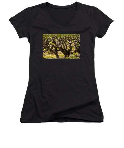 Wine On The Vine Women's V-Neck (Athletic Fit)