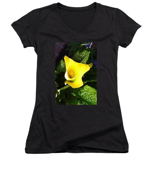 Yellow Calla Lily Women's V-Neck T-Shirt (Junior Cut) by Carla Parris