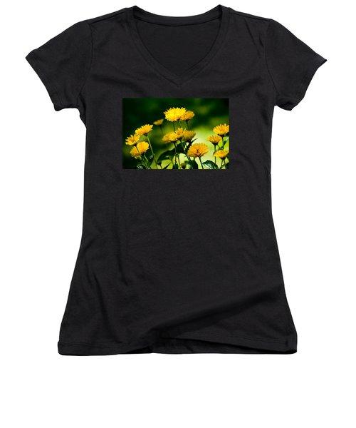 Yellow Daisies Women's V-Neck T-Shirt
