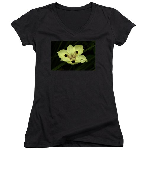 Yellow Iris With Rain Drops Women's V-Neck (Athletic Fit)