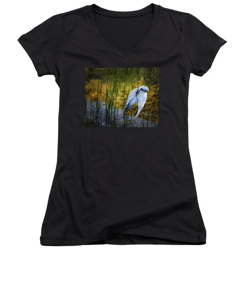 Zen Pond Women's V-Neck (Athletic Fit)