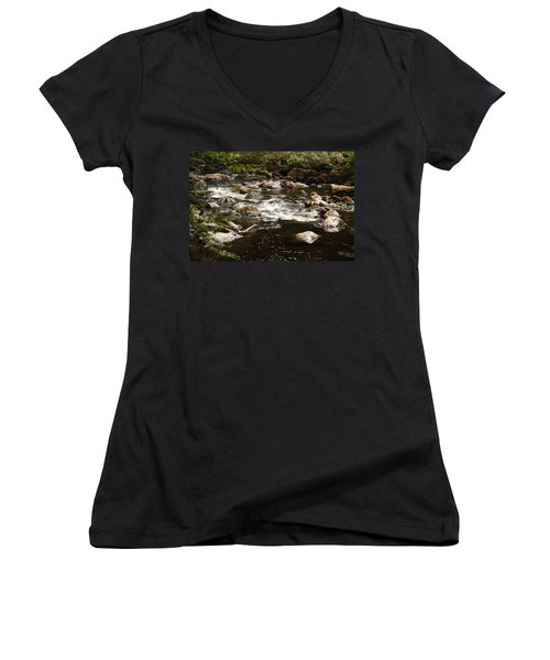 Little Stream At The Hermitage Women's V-Neck T-Shirt (Junior Cut) by Martina Fagan