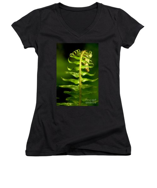 A Light In The Forest Women's V-Neck T-Shirt (Junior Cut) by Sean Griffin