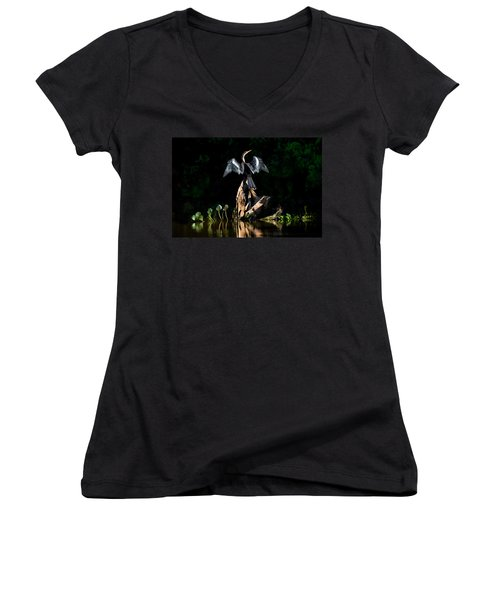 Anhinga Anhinga Anhinga, Pantanal Women's V-Neck T-Shirt (Junior Cut) by Panoramic Images