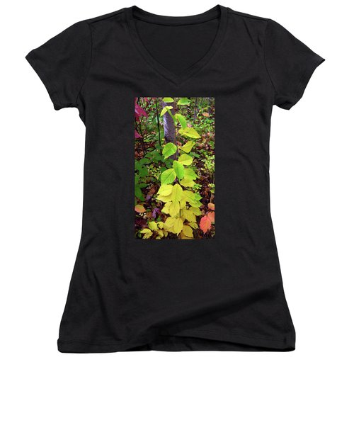 Autumn Leaves II Women's V-Neck