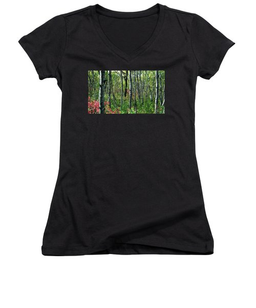 Autumn Woods Women's V-Neck