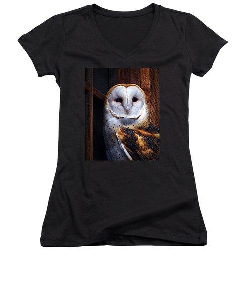 Barn Owl  Women's V-Neck T-Shirt (Junior Cut) by Anthony Jones