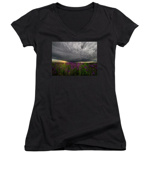 Women's V-Neck T-Shirt (Junior Cut) featuring the photograph Beauty And The Beast by Aaron J Groen