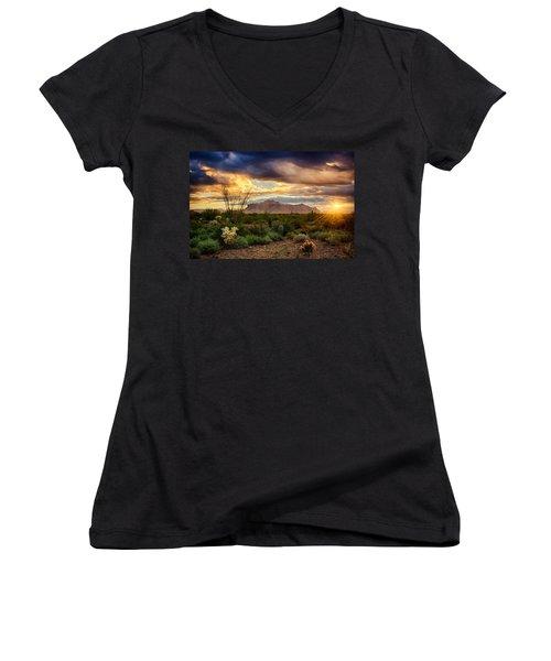 Beauty In The Desert Women's V-Neck T-Shirt