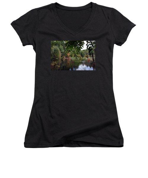 Blueberry Mountain Women's V-Neck T-Shirt