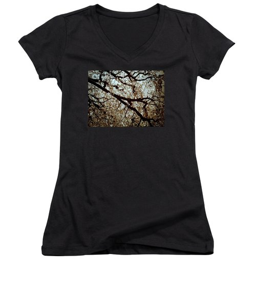 Branch One Women's V-Neck (Athletic Fit)