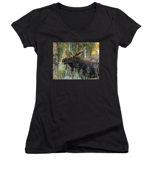 Calling All His Girls Women's V-Neck T-Shirt (Junior Cut) by Yeates Photography