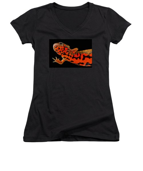 Chuxiong Fire Belly Newt Women's V-Neck T-Shirt (Junior Cut) by Dant� Fenolio