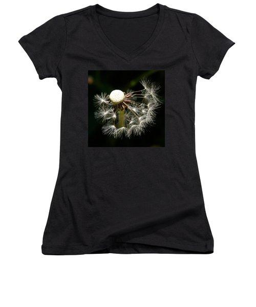 Dandelion Women's V-Neck T-Shirt (Junior Cut) by Ralph A  Ledergerber-Photography