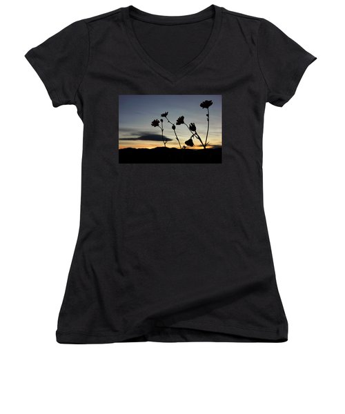 Women's V-Neck T-Shirt (Junior Cut) featuring the photograph Death Valley Superbloom 104 by Daniel Woodrum