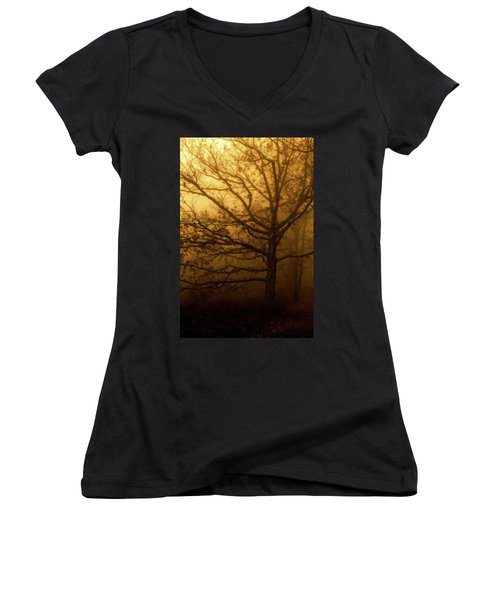 Hazy Daze Women's V-Neck T-Shirt (Junior Cut) by Deborah Scannell