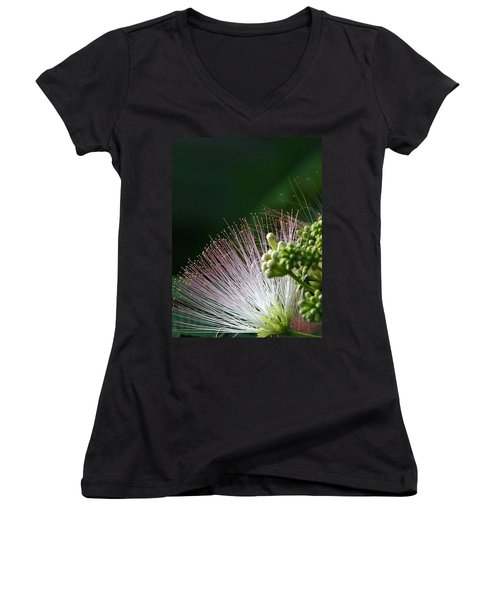 Women's V-Neck T-Shirt (Junior Cut) featuring the photograph Mimosa Whiskers by John Glass