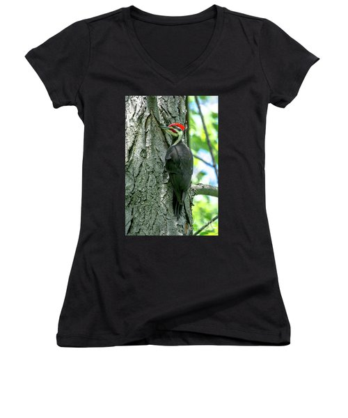 Mr. Pileated Woodpecker Women's V-Neck (Athletic Fit)