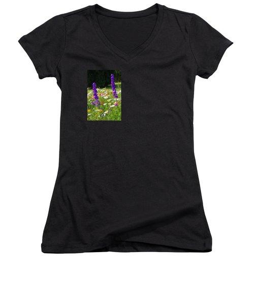 Ncdot Planting Women's V-Neck T-Shirt (Junior Cut) by Kathryn Meyer