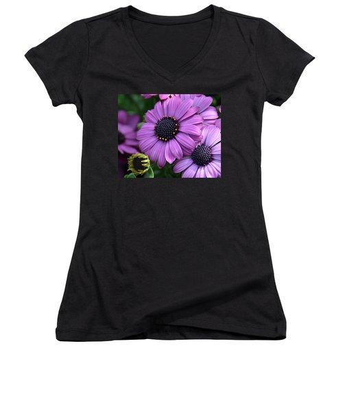 African Daisy Women's V-Neck T-Shirt