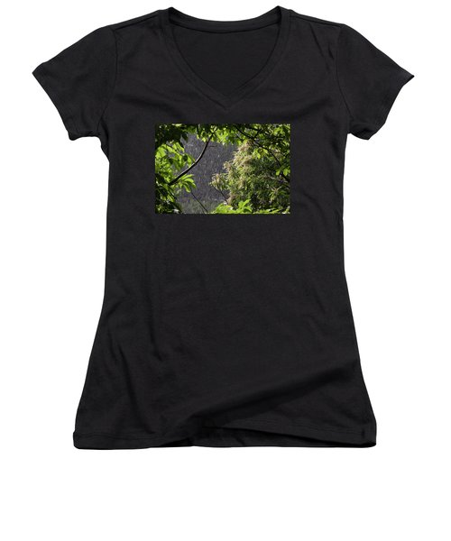 Women's V-Neck T-Shirt (Junior Cut) featuring the photograph Rain by Bruno Spagnolo