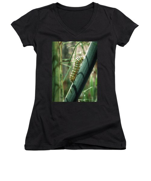 Women's V-Neck T-Shirt (Junior Cut) featuring the photograph Swallowtail Caterpillar by Meir Ezrachi