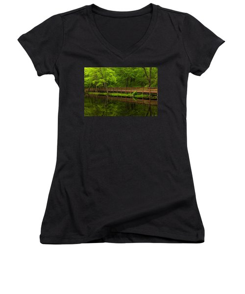 The Bridge Women's V-Neck T-Shirt (Junior Cut) by Karol Livote