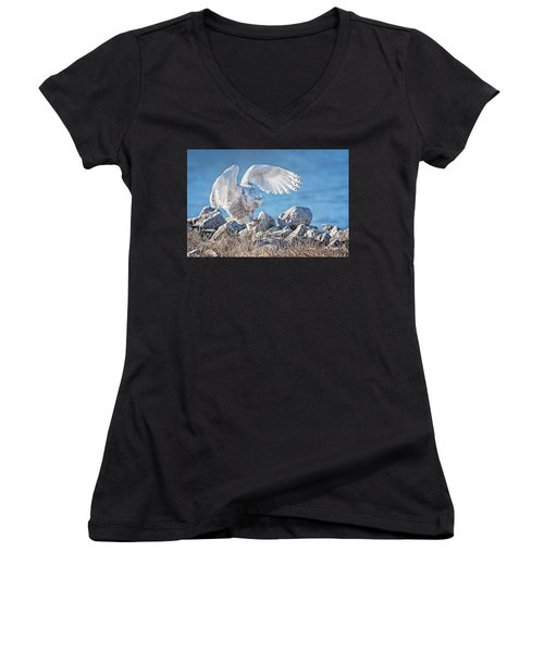 Two Point Landing Women's V-Neck (Athletic Fit)