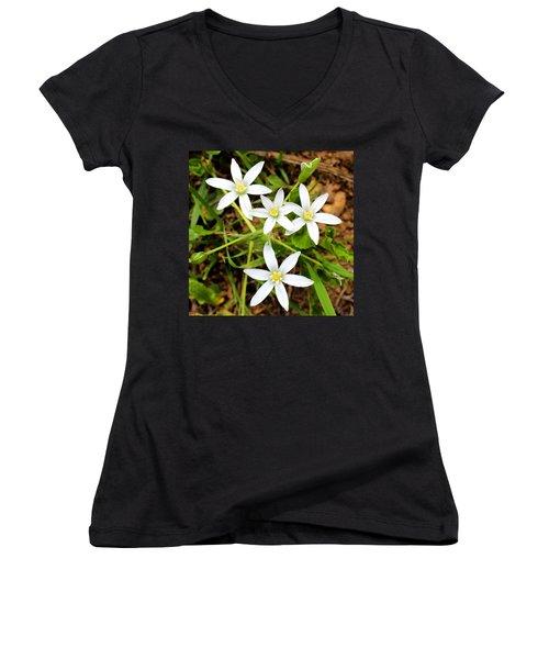 Wild Flowers Women's V-Neck T-Shirt