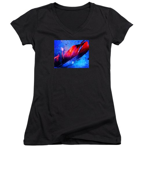 108 Women's V-Neck T-Shirt (Junior Cut) by Timothy Bulone