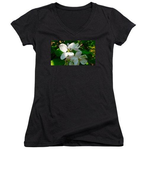 Apple Blossoms Women's V-Neck T-Shirt (Junior Cut) by Johanna Bruwer